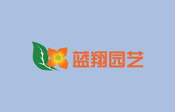 蓝翔园艺种苗【八合一网上商城建设(中英文版)】