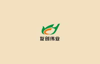 友创伟业【八合一网站设计(企业中英文版)】